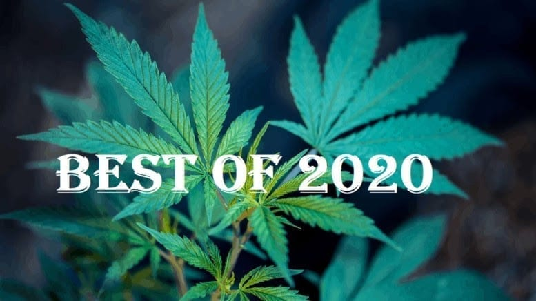 10 Cannabis Brands to Watch in 2020