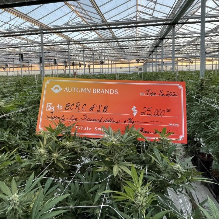The Cannabis That Helps Fight Cancer: Autumn Brands Donates $25,000 to BCRC of Santa Barbara